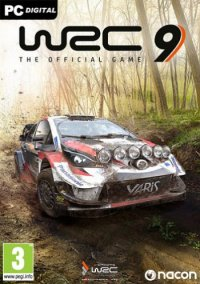 WRC 9 FIA World Rally Championship: Deluxe Edition