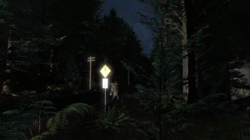 Pineview Drive - Homeless (2019) PC | Лицензия